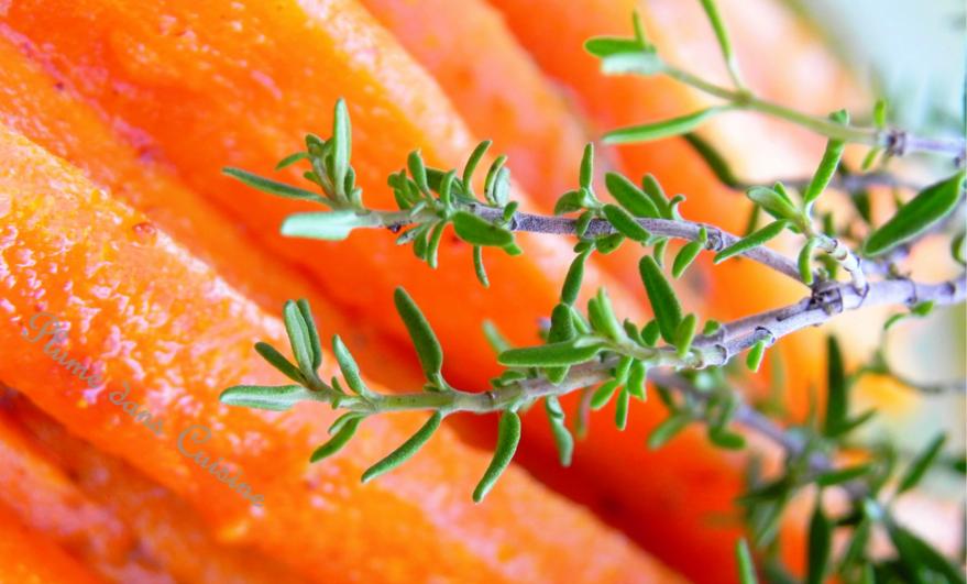Frites de carottes au curry (4 pers)