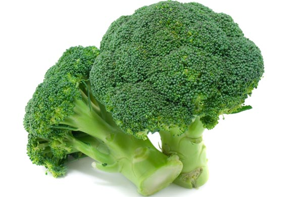 Fruits et légumes de septembre