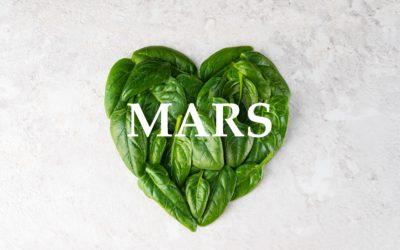 Mars- Epinards - MADIET